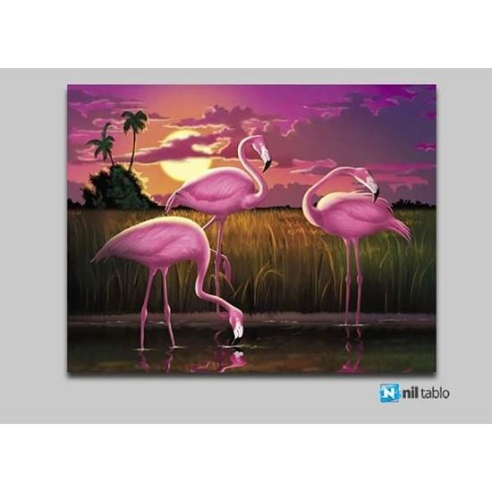 Picture of Sudaki Flamingo Kanvas Tablo