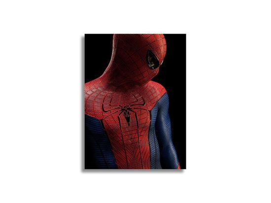Picture of Spiderman Silence Kanvas Tablo