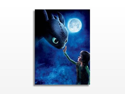 HOW TO TRAIN YOUR DRAGON Kanvas Tablo resmi