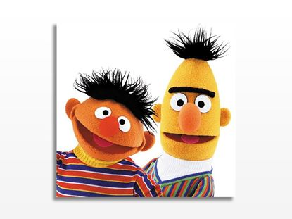 Bert and Ernie Kanvas Tablo resmi